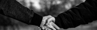 Признаки сговора между страховщиками в отношении цен на ОСАГО не обнаружены